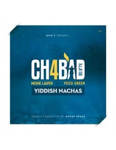 Moshe Laufer - Chabad 4