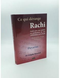 Ce qui dérange Rachi - Devarim